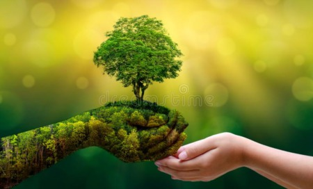 It is Your Time To Plant Some Roots