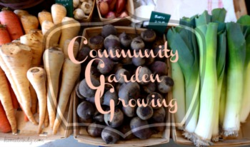 Community Gardens in Indianapolis