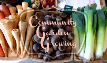 Community Gardens in Indianapolis