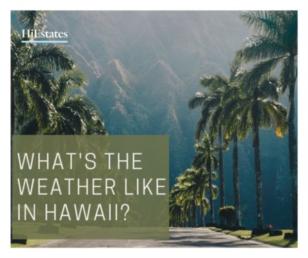 What's The Weather Like in Hawaii?