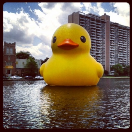Breaking News: Big Rubber Duck Invades the 757
