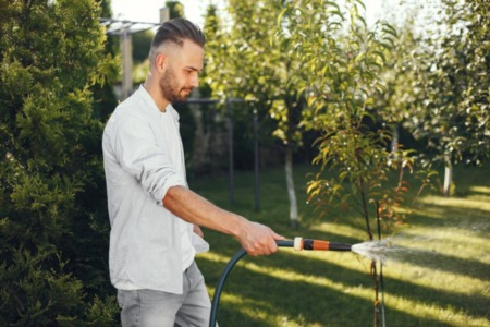 10 Ways Your Yard Can Help Raise Your Property Value