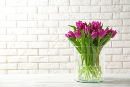 Flowers At Home? Here Are Some Benefits