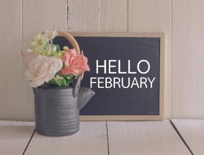 Mark's Market Update for February 2019