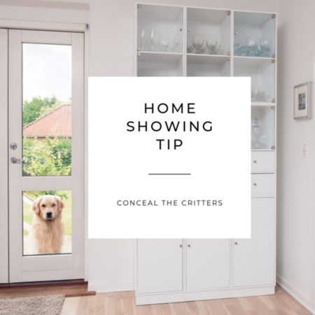 8 Showing Tips for Orting Home Sellers