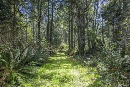 Buying Land in Covington