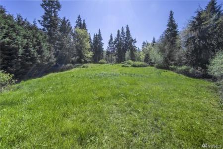 Buying Land in Orting