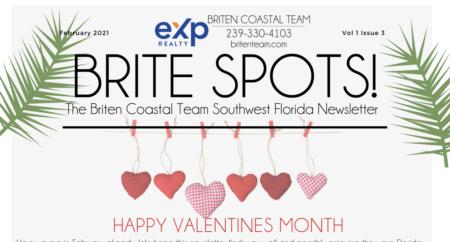 Brite Spots Newsletter February 2021