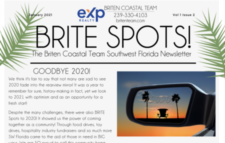 Brite Spots Newsletter January 2021