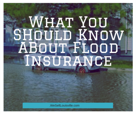 Who Needs Flood Insurance and How Should They Go About Obtaining It?