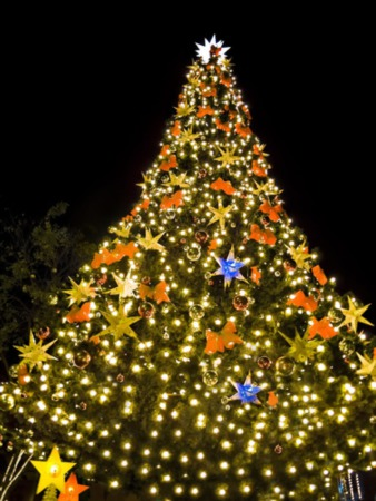 Louisville KY Light Up Christmas Events 2019