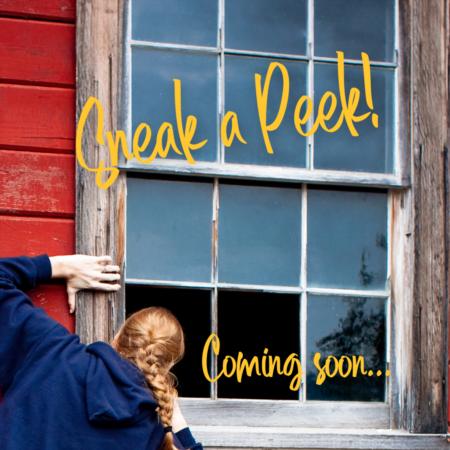 Sneak Peek...Coming soon Snowscape Condo
