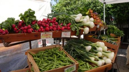 FRESHFARM Farmers Markets | Where to Find the Best Local Produce in the DMV