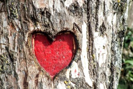 15 Ways to Celebrate Valentine's Day This Year