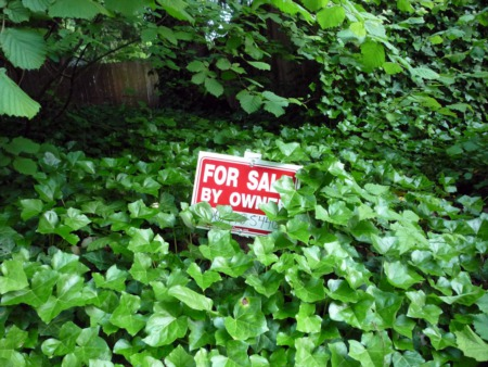 Thinking of Selling FSBO? 7 Reasons Why It's A Mistake