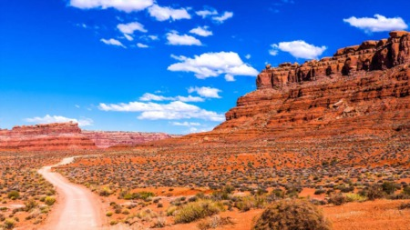 Things To Do In Las Vegas For Retirees