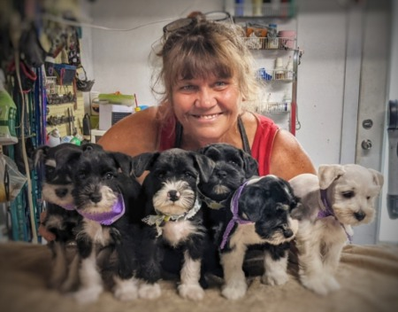 A noncomprehensive guide to pet-based businesses in the Round Rock, Pflugerville and Hutto area