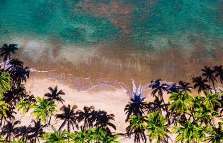 Hello Maui