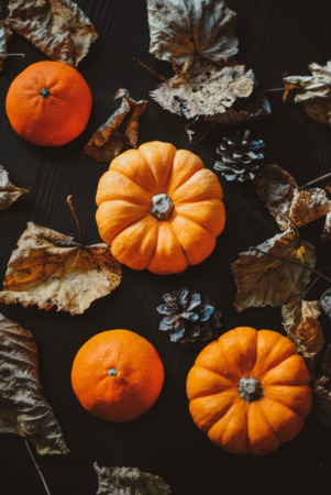 Check out Halloween Hoopla in Deerfield - October 23