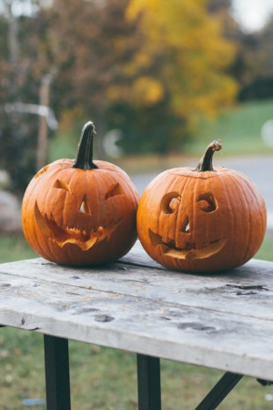 Explore A Family Halloween at Wagner Farm in Glenview, IL on October 24