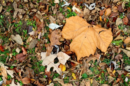 Get your Home Ready for Winter in North Shore Chicago