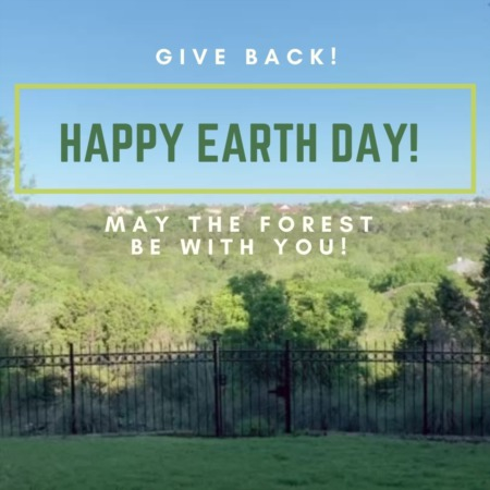 The Best Non-Profits To Donate To For Earth Day