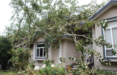 5 Things Calgary Investment Property Owners Should Know About Dealing With Damage