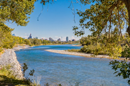 Calgary Real Estate Statistics for October 2020