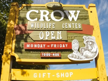 CROW - Day 2 of 100 Things to do on Sanibel & Captiva