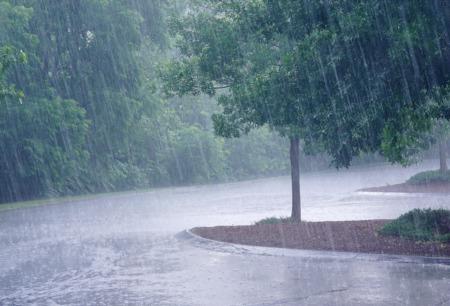 The Best Rainy Day Activities in Boca Raton | Indoor Activites In Boca