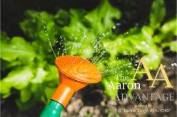 Tips for Beginner Gardeners