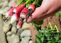 Ways Gardening Keeps You Healthier