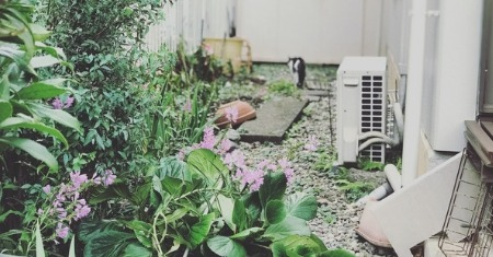 Landscaping Mistakes That Can Destroy Your Yard