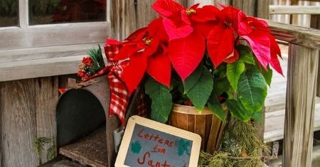 Classic Holiday Displays