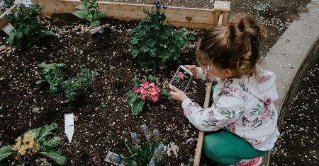 Great Gardening