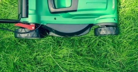Renew Your Lawn