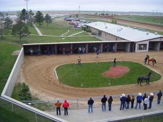 Horse Racing in Denver at Arapahoe Park Racetrack