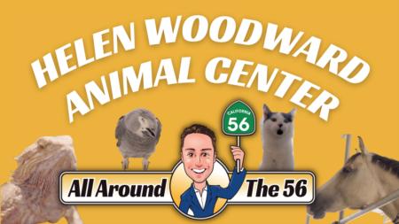 All Around The 56: Helen Woodward Animal Center