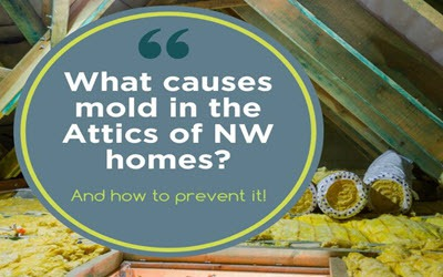 Most common causes of mold in attics of NW homes