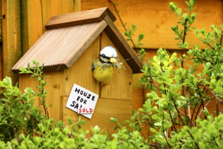 When Homes Sell Fast, Do You Need a Real Estate Agent?