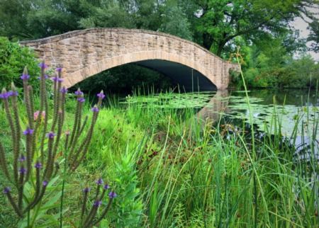 Get Out & Enjoy Fresh Air in Madison for Free