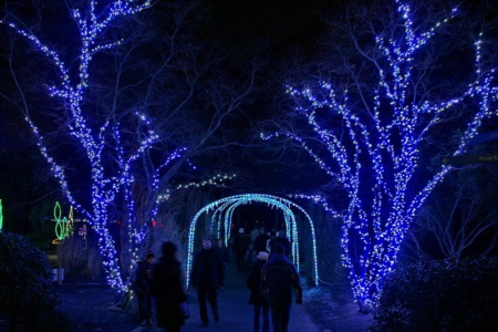 Holiday Events in Madison for 2018