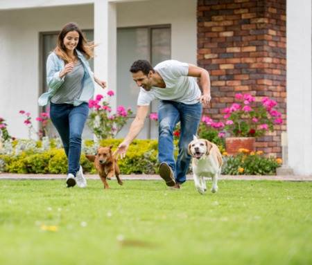 7 Tips for Finding the Perfect Home for You and Your Pets
