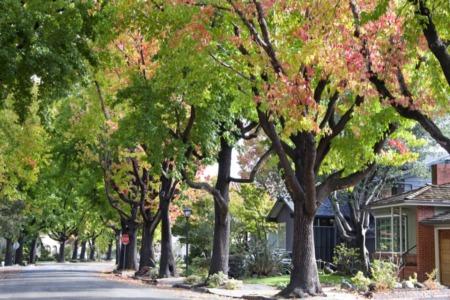 The Best Neighborhoods in Austin, TX