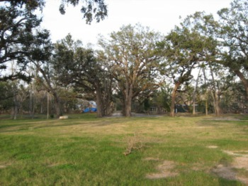 Tallahassee Residential Lot Sales See A Boost In December