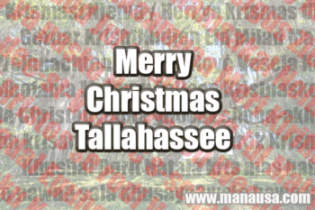 129 Ways To Say Merry Christmas Tallahassee