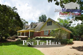 Have You Seen What Is Hiding In Pine Tip Hills?