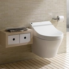 Indianapolis luxury bathroom trends: TOTO Washlet