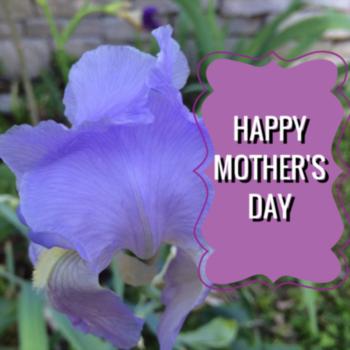 Dear Mom: Nashville Loves You
