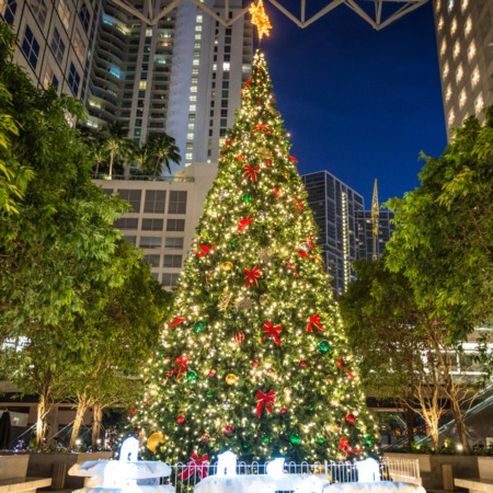 Fun Things To Do for the Holidays in Palm Beach County